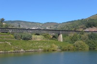 Linha de Douro