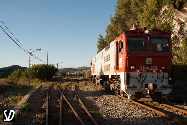 DSC_7266